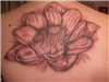 Tattoo on my back!!