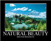 Natural Beauity